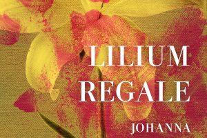 lilium_regale13058